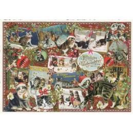 Fröhliche Weihnachten - Katzen - Tausendschön - Weihnachtskarte