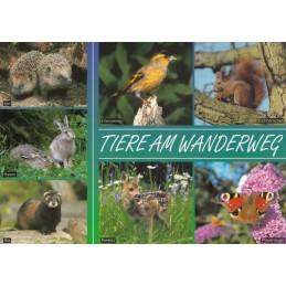 Tiere am Wanderweg - Ansichtskarte