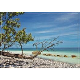 An der Kreideküste - Ansichtskarte