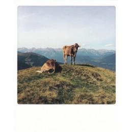 Gipfelchiller - PolaCard