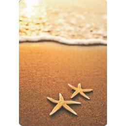 Seesterne am Strand - Medley-Postkarte
