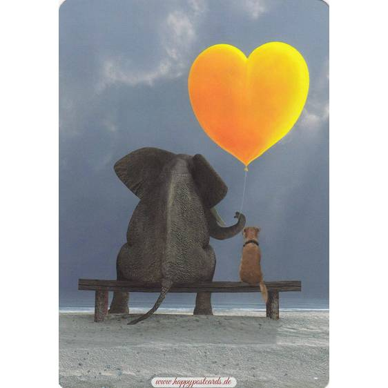 Elephant with dog - Medley postcard