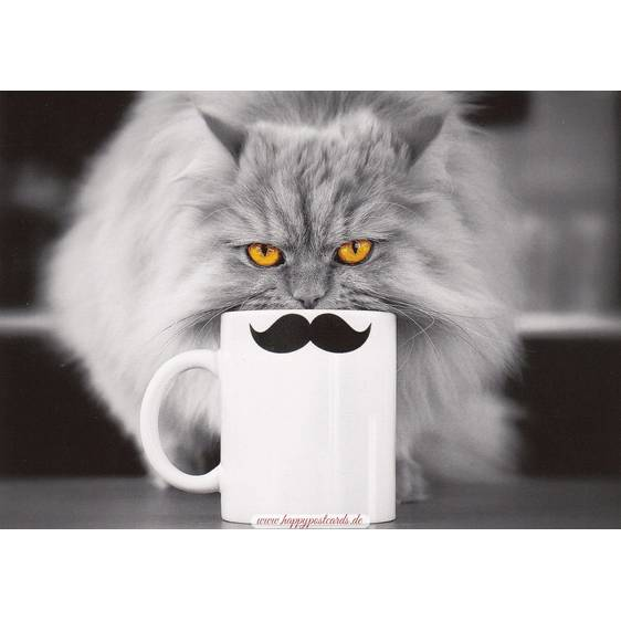 Cat with a cup - Postcard