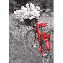 Red bicycle with flowers - Contrasts - Postcard