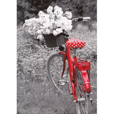 Rotes Fahrrad mit Blumen - Kontraste - Postkarte