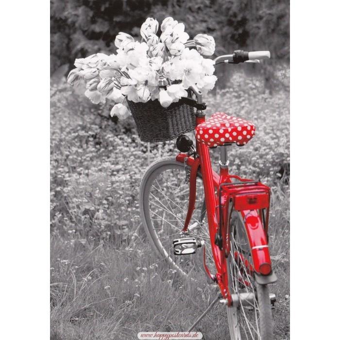 POSTKARTEN | Kontraste | Rotes Fahrrad mit Blumen - Kontraste ...