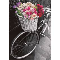 Bicycle with colourful flowers - Contrasts -  Postcard