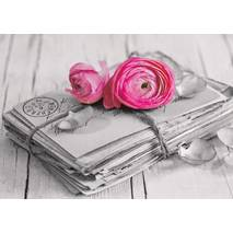 Letters with roses - Contrasts - Postcard