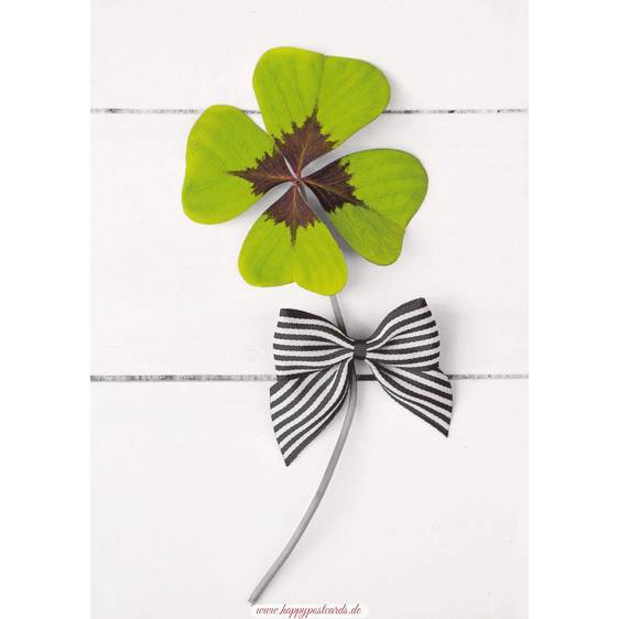 Shamrock with a bow - Contrasts -  Postcard