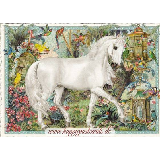 Horse - Tausendschön - Postcard