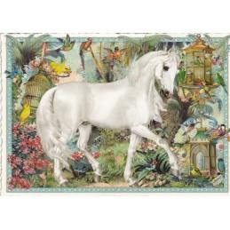 Pferd - Tausendschön - Postkarte