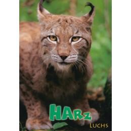 Harz - Lynx - Viewcard