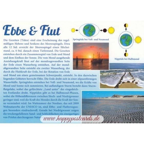 Ebbe und Flut - Chronik - Ansichtskarte