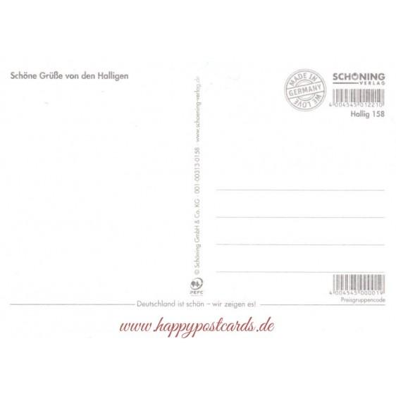 Die Halligen - Chronikkarte
