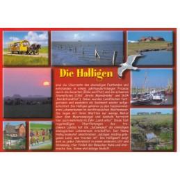 Die Halligen - Chronicle - Viewcard