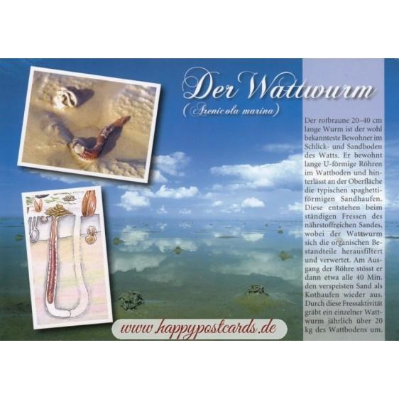 Der Wattwurm - Chronicle - Viewcard