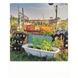 Tempel Gardening - Pickmotion Postkarte