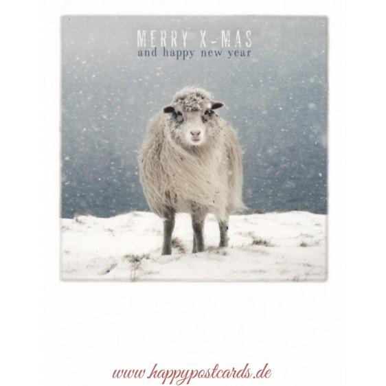 Weihnachtsschaf - Weihnachtskarte - PolaCard