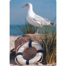 Seagull and lifesaver - Medley postcard
