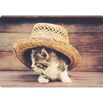 Cat under a hat - Medley postcard