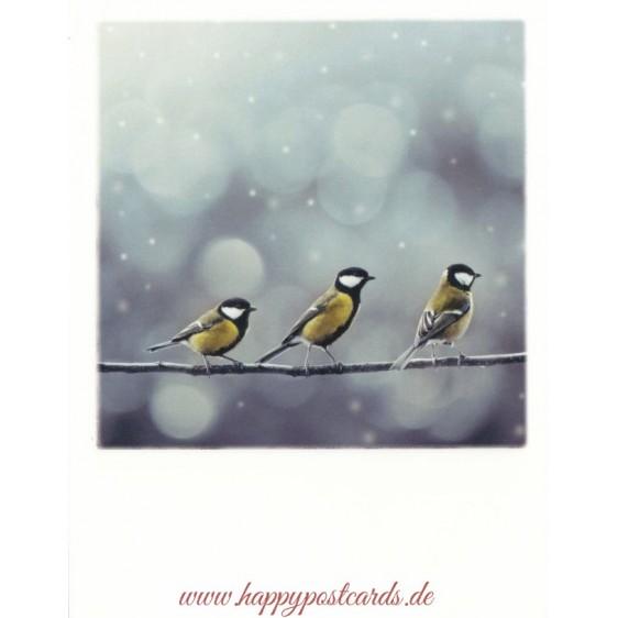 Drei Vögel - Weihnachtskarte - PolaCard