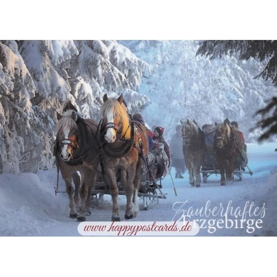 Erzgebirge - Sledging - Viewcard