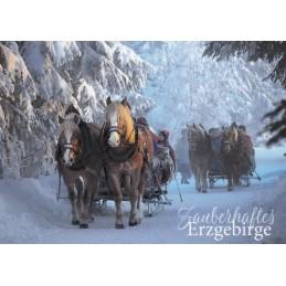 Erzgebirge - Schlittenfahrt - Ansichtskarte