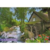 Mills of the Black Forest - Viewcard