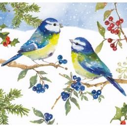 Blaumeisen im Schnee - Carola Pabst Postkarte