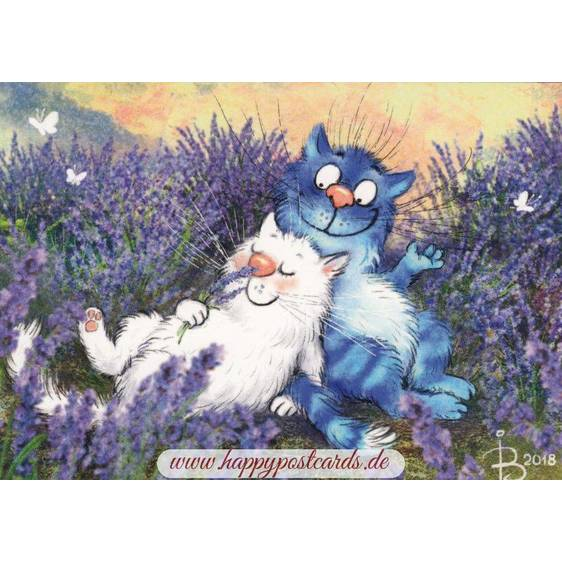 Lavender - Blue Cats - Postcard