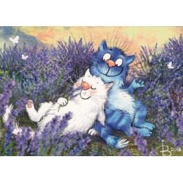 Lavendel - Blaue Katzen - Postkarte
