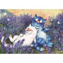 Lavender - Blue Cats - Postcard