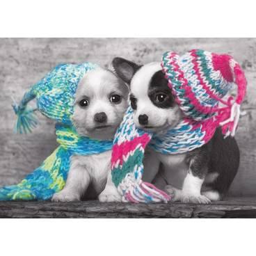Hunde in Strick