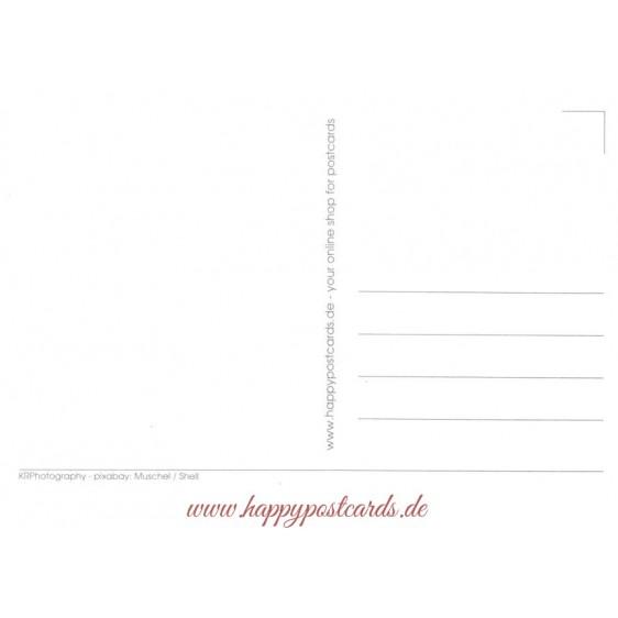 Muschel - Postkarte
