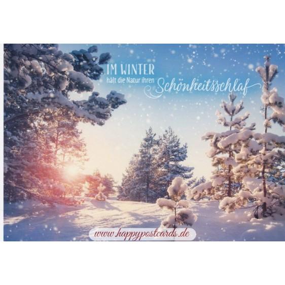 Im Winter - Schönheitsschlaf - Ansichtskarte