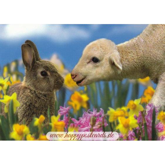 Lamb and Bunny - Easter Postcard