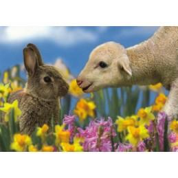Lamm und Hase - Ostern Postkarte