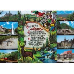 Gruß aus dem Harz - Ansichtskarte