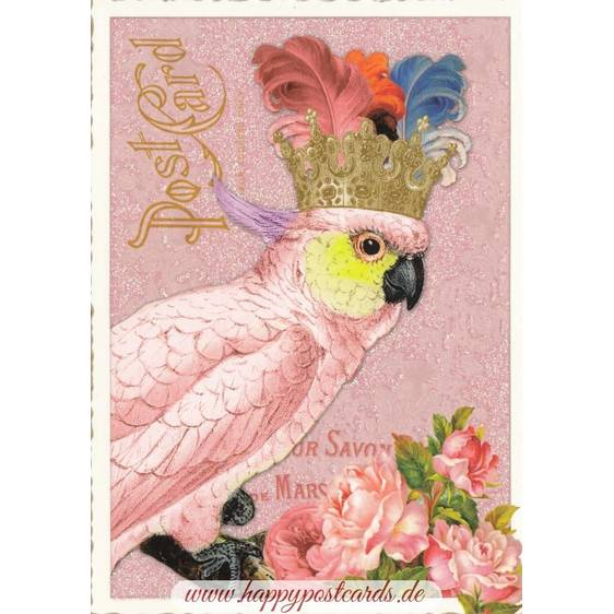 Cockatoo - Tausendschön - Postcard