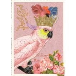 Kakadu - Tausendschön - Postkarte