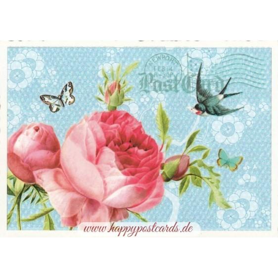 Rose - Tausendschön - Postkarte
