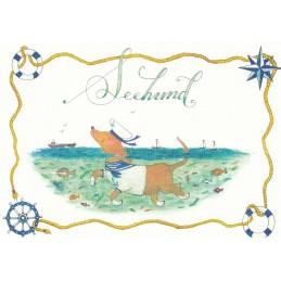Seehund - de Waard Postkarte