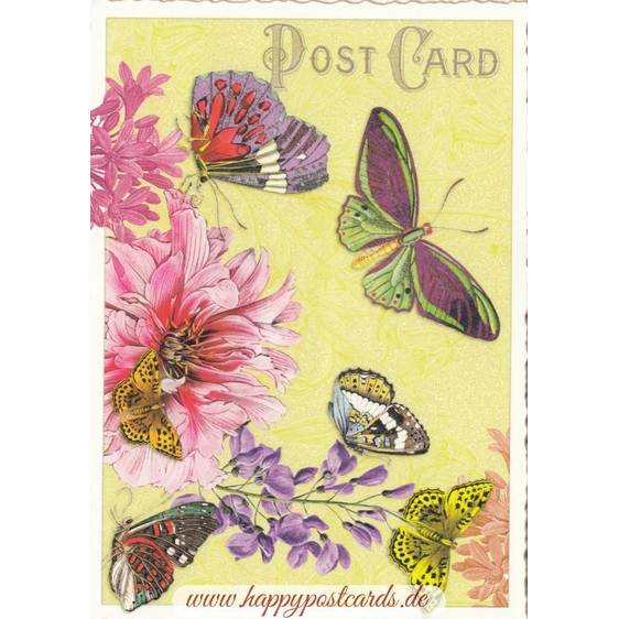 Butterflies with flowers - Tausendschön - Postcard