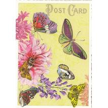 Butterflies with flowers - Tausendschön - Postcard
