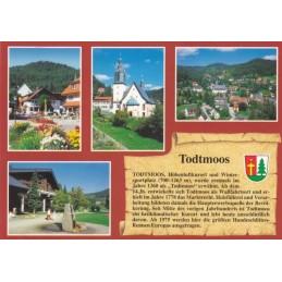 Todtmoos - Chronik - Ansichtskarte