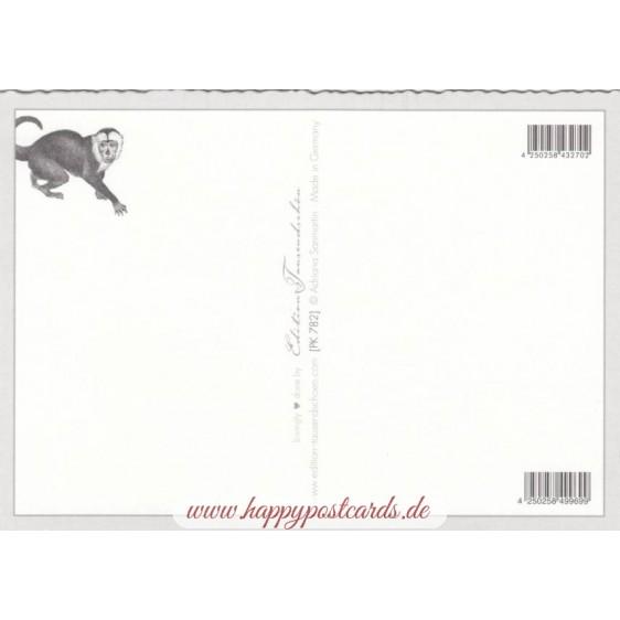 Jungle - Tausendschön - Postcard