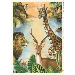 Dschungel - Tausendschön - Postkarte