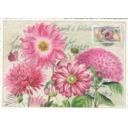 Flowers 2 - Tausendschön - Postcard