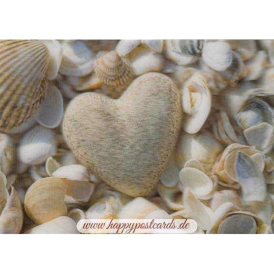 3D Heart and shells - Postcard