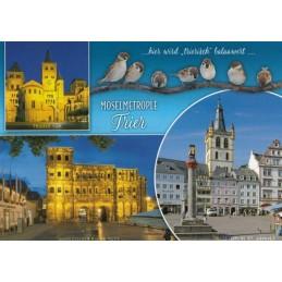 Trier - Sparrows - Viewcard